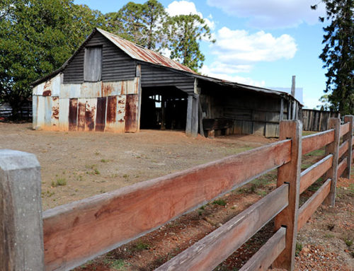 Bella Vista Farm – Fencing & Gates