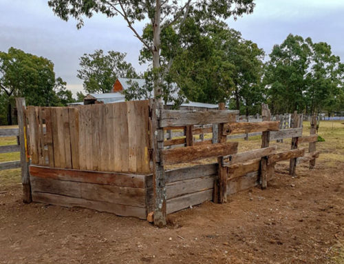 Bella Vista Farm – Stock Loading Ramp
